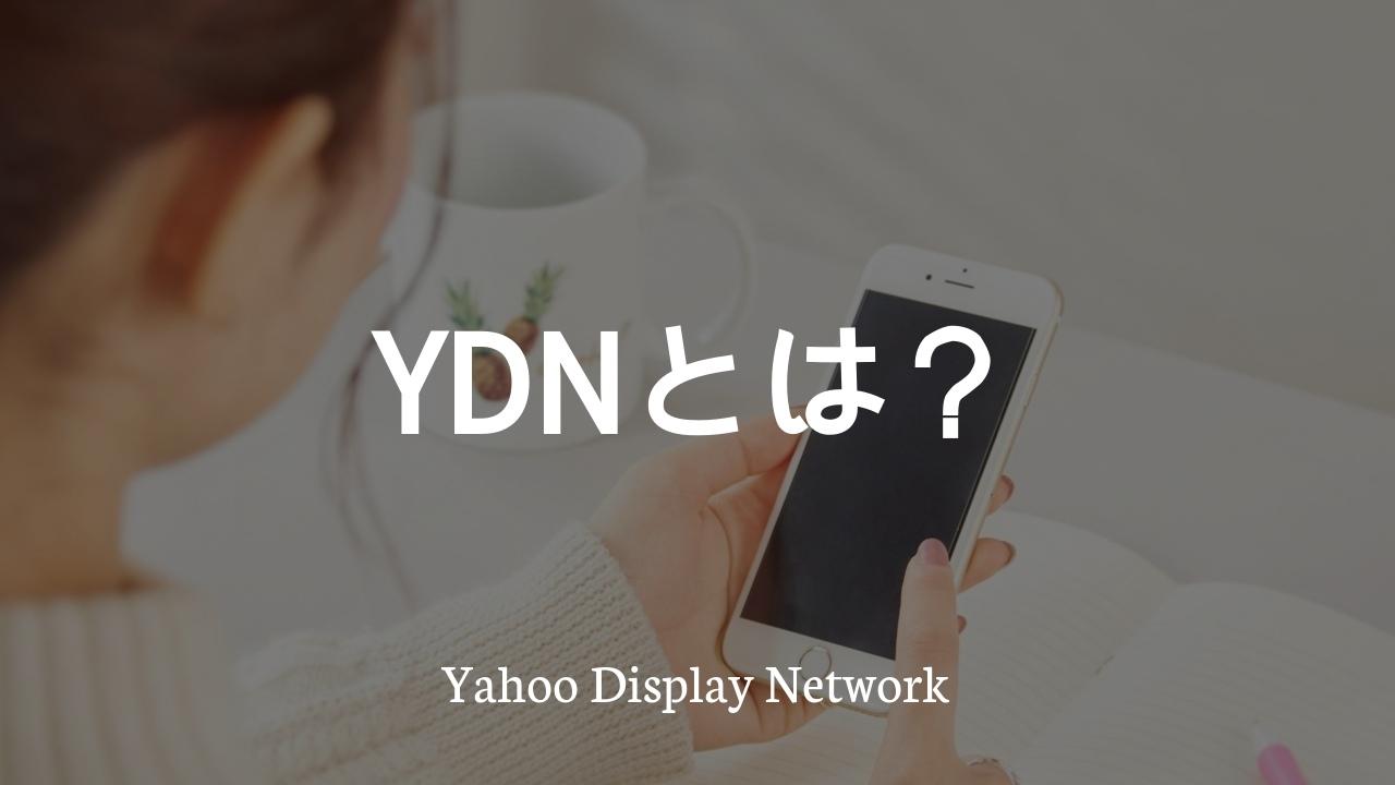 YDNとは?